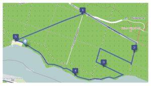Müggelturm-Lauf 5 km